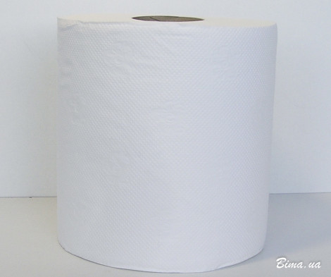 Полотенца бумажные в рулоне 100м - TWP2.100.C